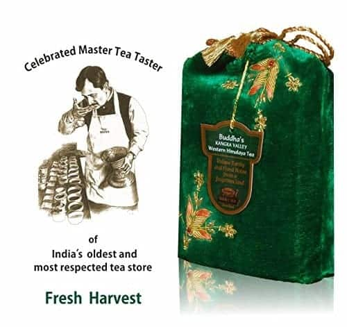 Western Himalayas Kangra Tea Leaves Harvest Selection